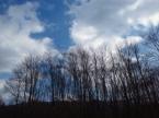 冬空の晴天