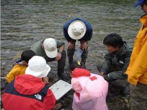 河川生態系学習