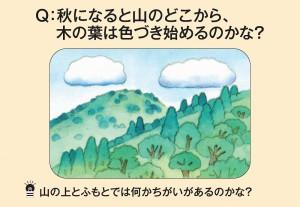 秋になると山のどこから、木の葉は色づき始めるのかな?