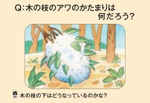 木の枝のアワのかたまりは何だろう?