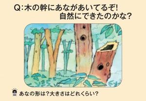 木の幹にあながあいてるぞ!自然にできたのかな?