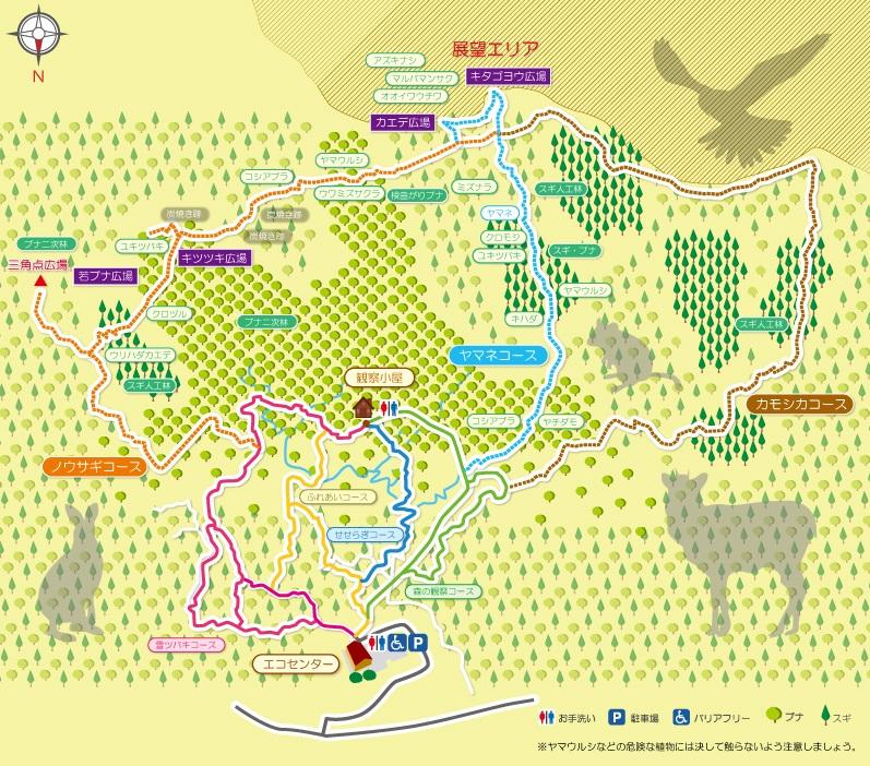 遊々の森マップ